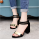 Open Toed Zipper Sandals For Women-Black image